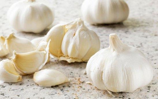 Garlic_3498236b